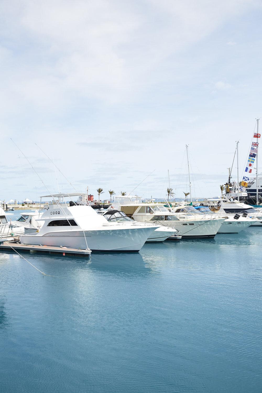 Bermuda_0747.jpg