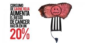 """Imagen de la Asociación Civl """"Antes de Partir"""" www.antesdepartir.org.mx"""