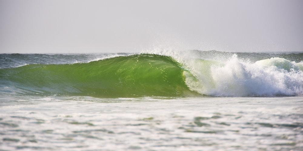 IBSP Wave 10x20 4.jpg