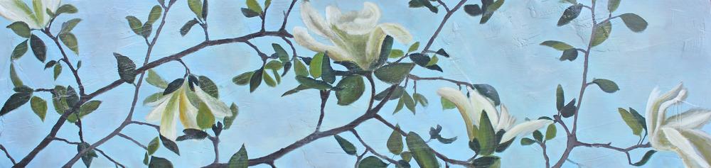 magnolia #4 10''x50''.jpg