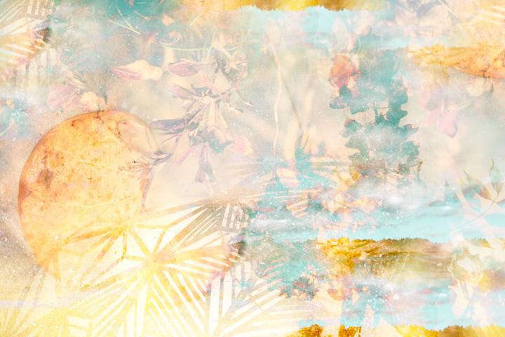 Palm Dust