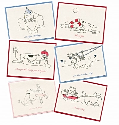 Create your own kenny the pooch greeting card variety pack 6 cards create your own kenny the pooch greeting card variety pack 6 cards m4hsunfo