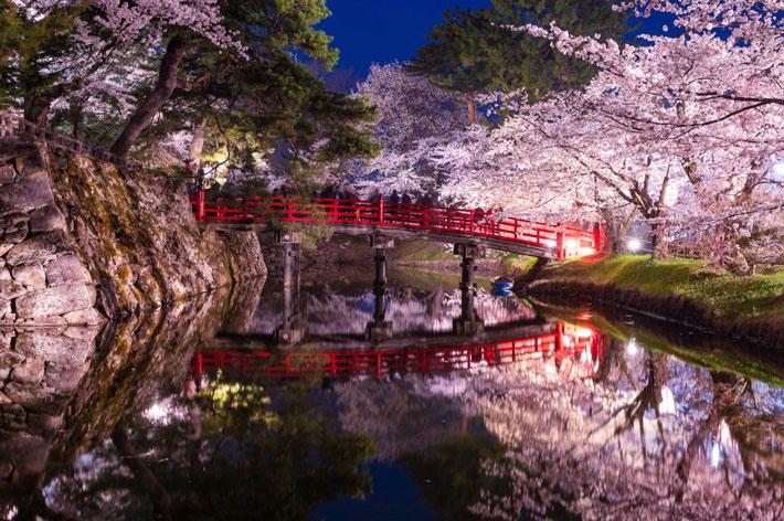 HirosakiPark.jpg