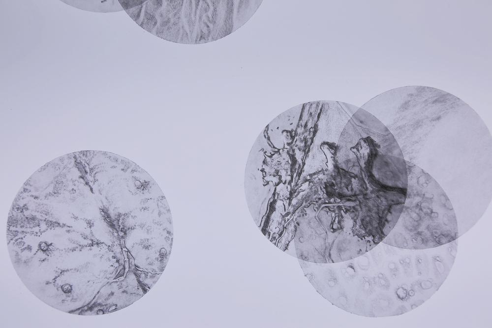 SoL detail 1.jpg