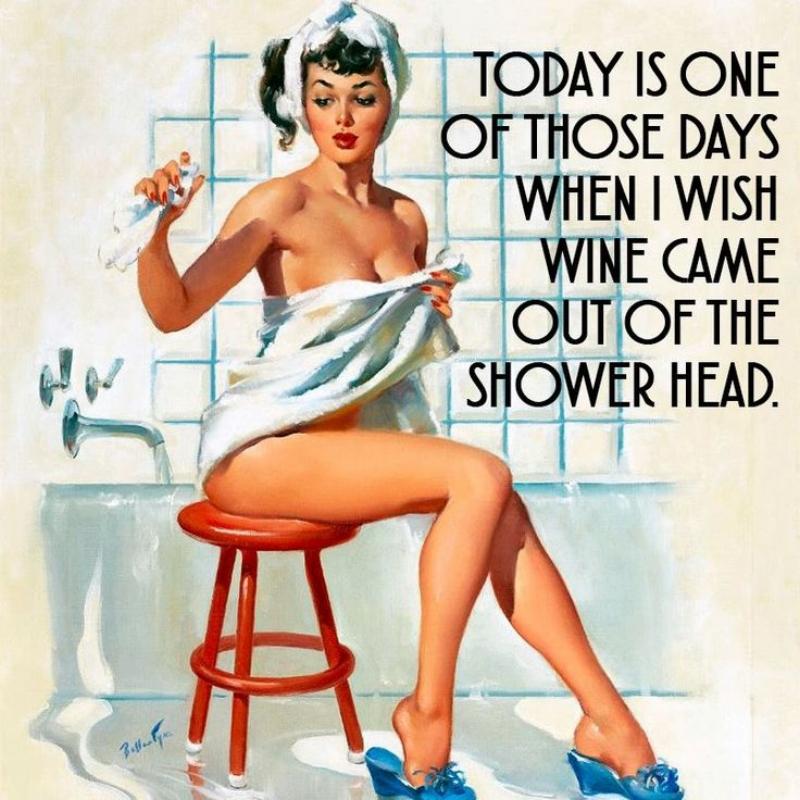 c8eb8c095556ca1e0de5f47aff64c762--wine-meme-shower-heads.jpg