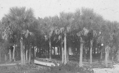 Cedar Point, ca.1900, now known as Golden Gate Point. Timber was floated in on rafts through here. Credit: Sarasota County Historical Resources