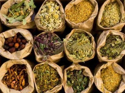 10961395-medicinal-herbs.jpg