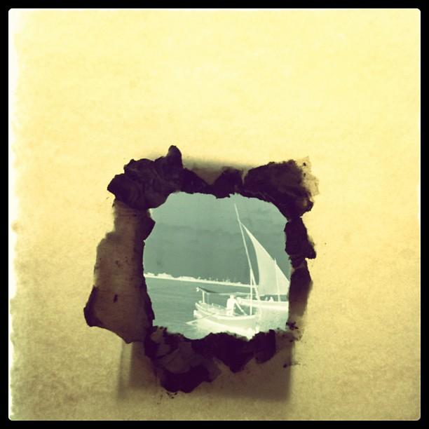 SeaSkin.jpg