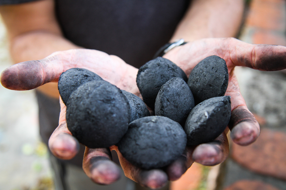 Green Charcoal Briquettes in Colin's Hands