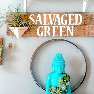 plants - salvaged green