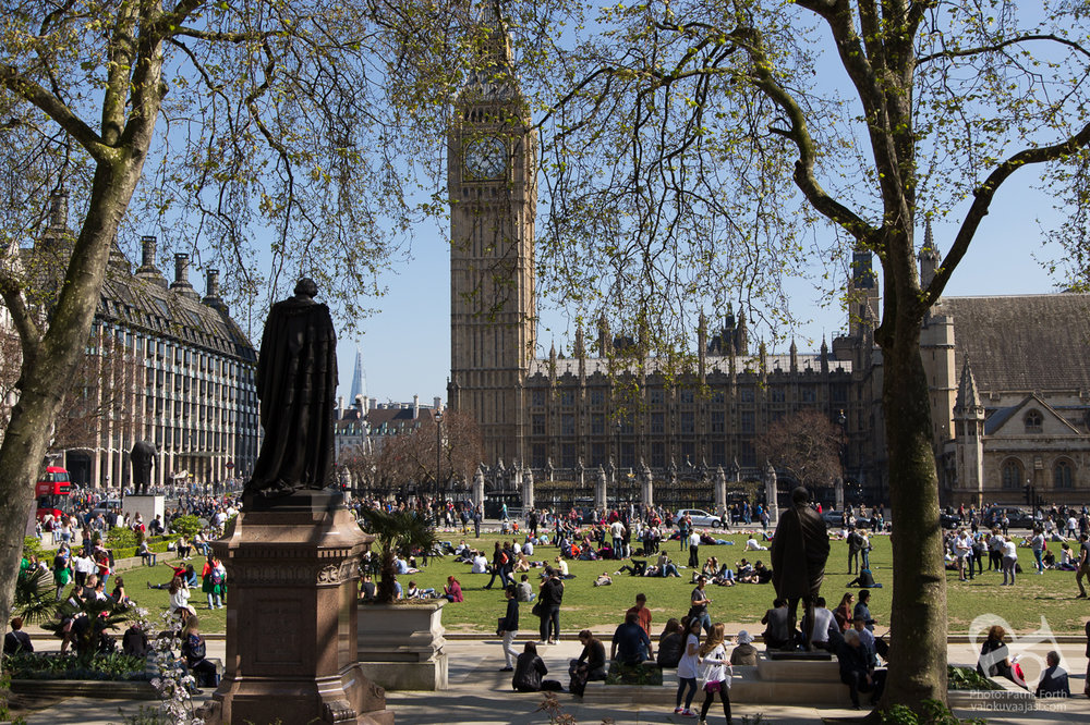 Parliament Square Garden and Elisabeth Tower