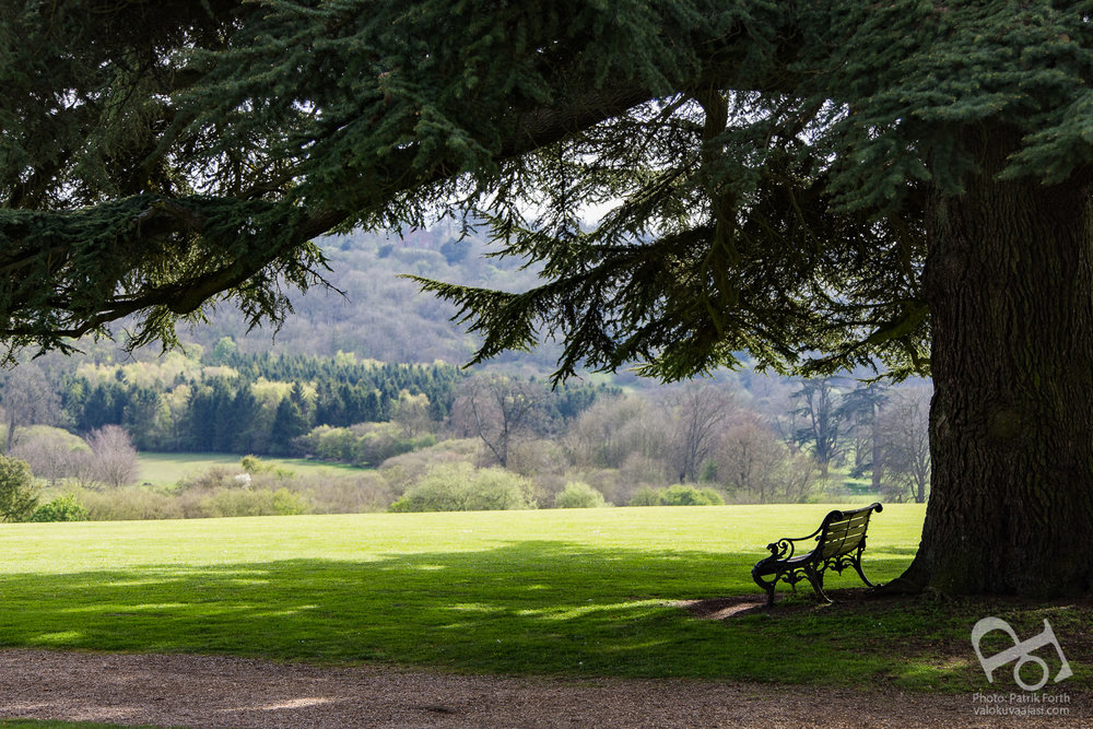 View from the South Lawns at Highclere Castle