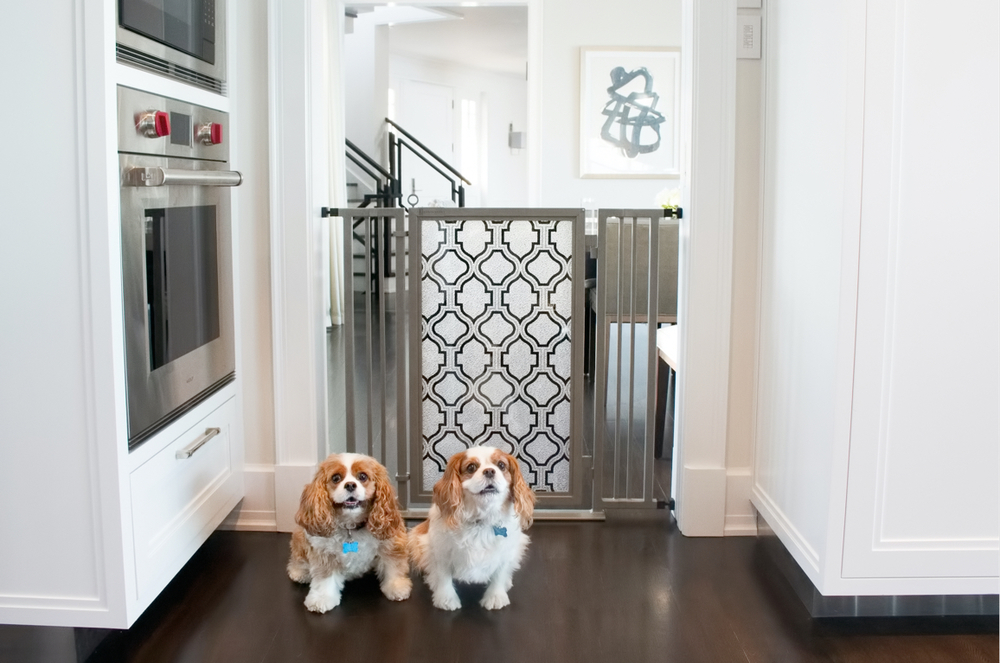 Chelsea & Fanny proudly introducing the new Satin Nickel finish on the Fusion Gate.