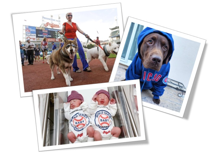 "We sports fans just love to get our babes and pups into the game!  Check out these two cute articles we found celebrating true ""fanhood"" amongst Cleveland Indian Fans (article link) and Chicago Cub fans (article link)."
