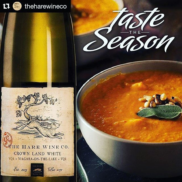 We're pairing our hearty Carrot and Coriander soup with @theharewineco 2016 Crown Land White! You can taste this great pairing at The Hare Wine Co. Each weekend this November!  #TasteTheSeason all November long at the @niagarawine wineries!