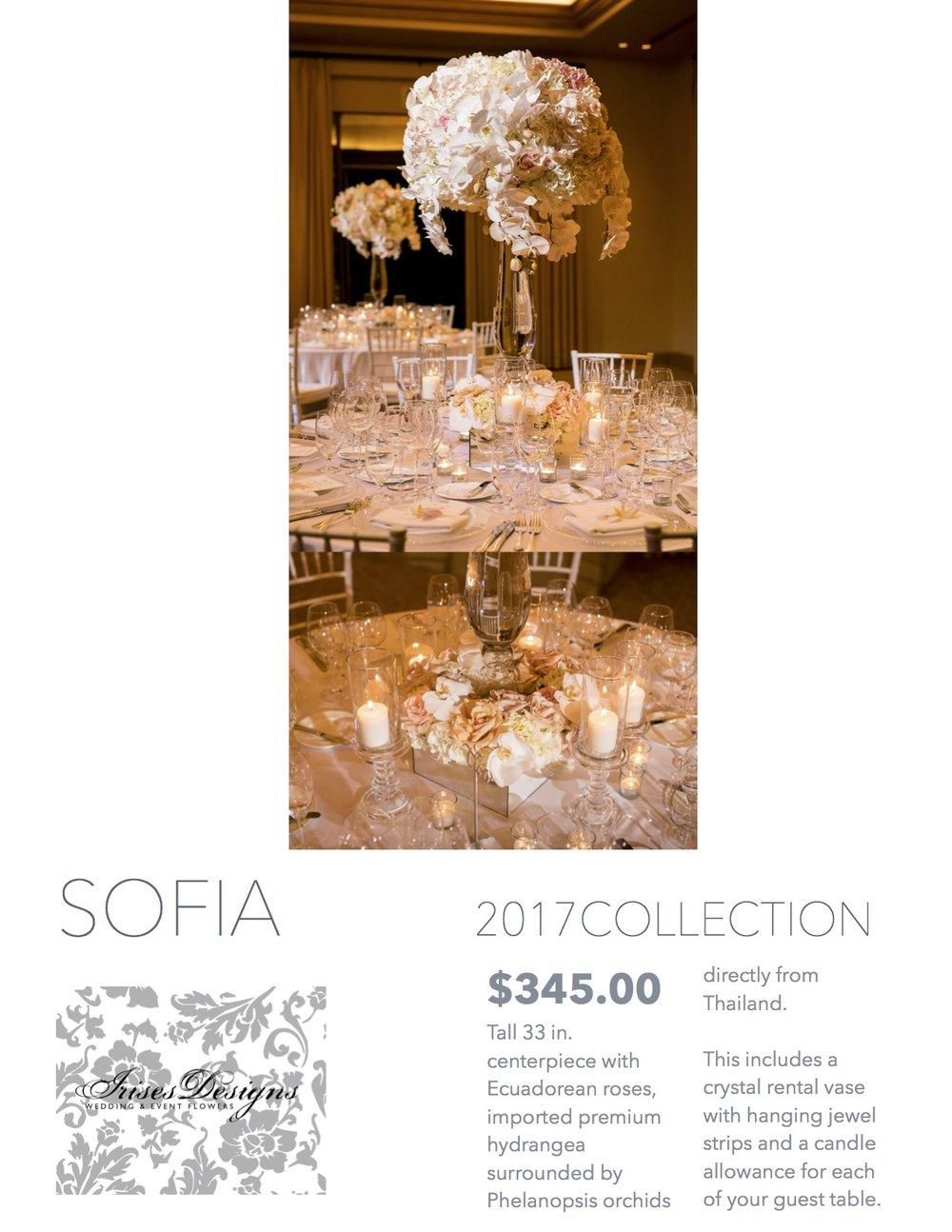 2017 Sofia.jpg