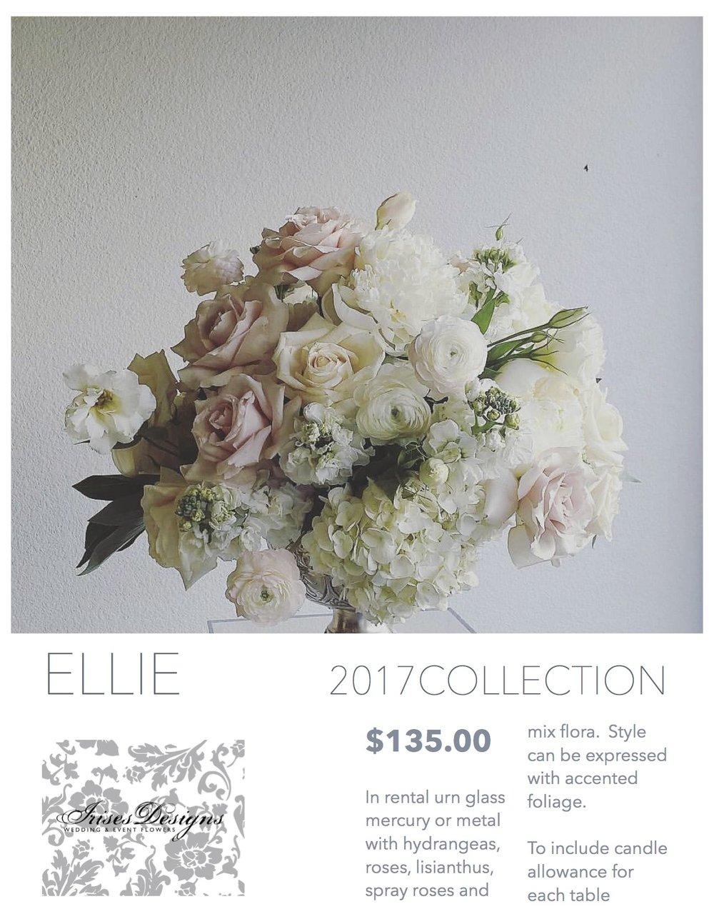 2017 Ellie.jpg