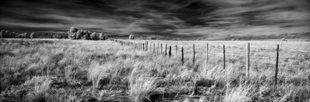 Pecos Fence