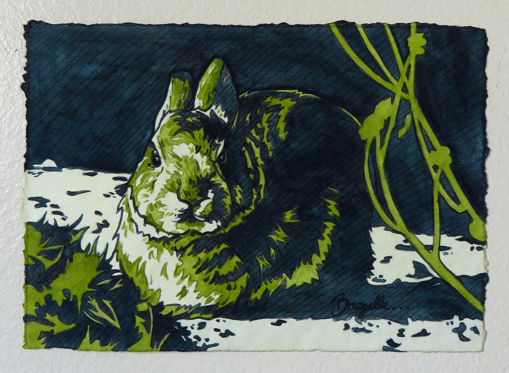 Little Lagomorph Study in Blue