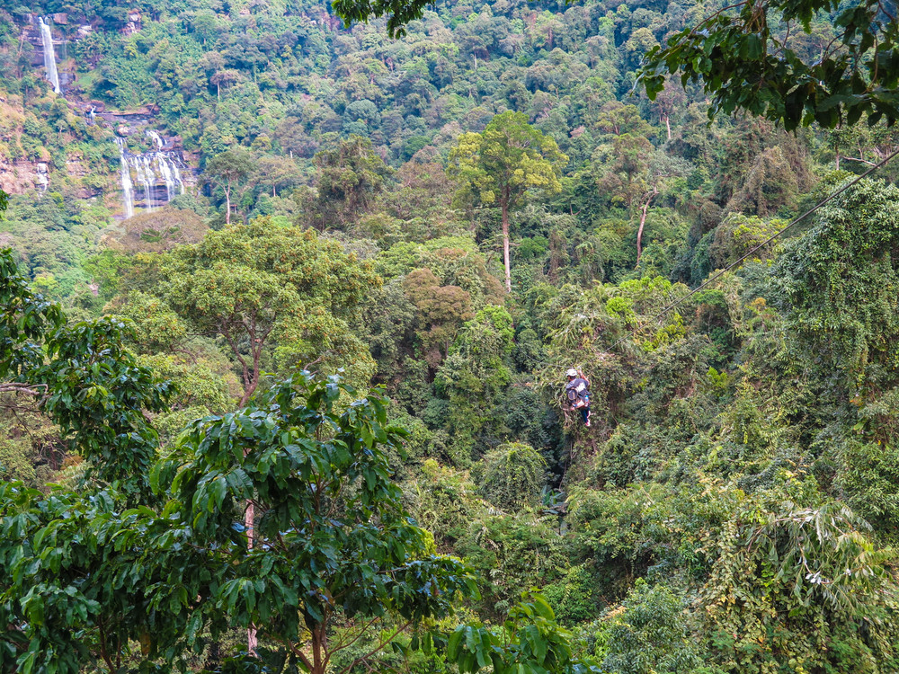 Zip Lining Through Southern Laos