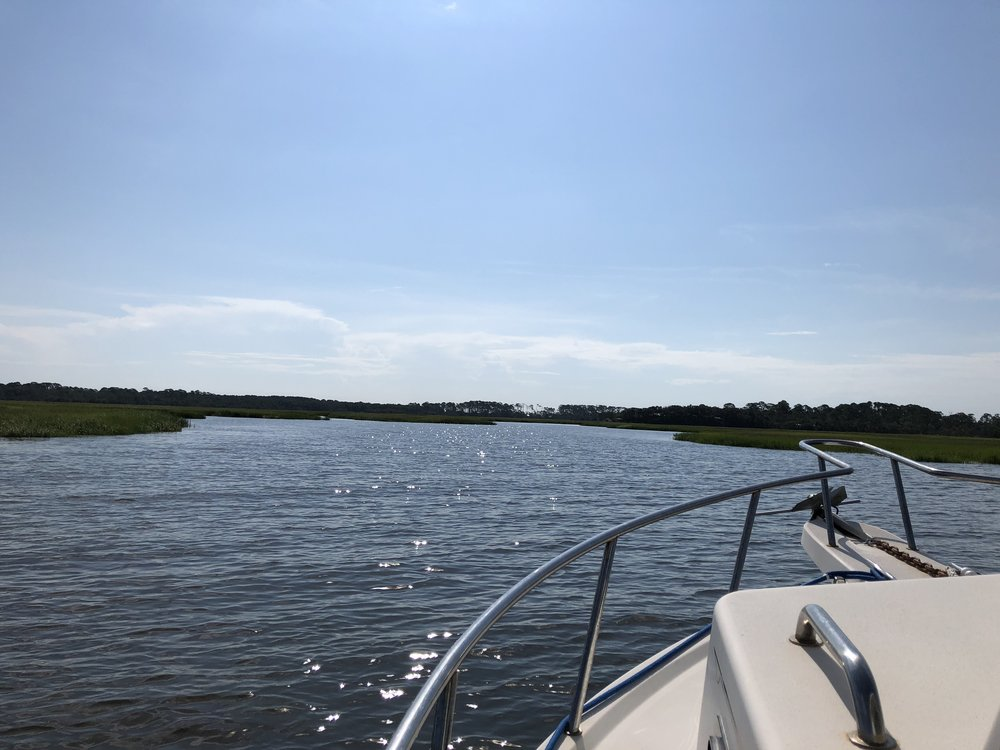 The view from the boat to Little Cumberland Island, reporting on the spaceport