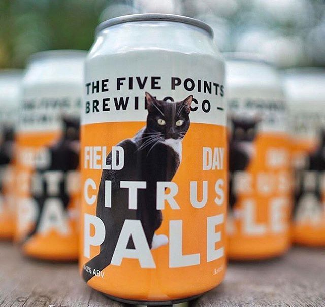 Loving this collaboration from our Venn St market friends @fivepointsbrew for Field Day. CITRUS PALE. Mosaic hops with grapefruit and Sicilian lemons. Yes please lads! #paleale #fieldday #dinerama #brewery #vennst #5points #beer #andmorecats