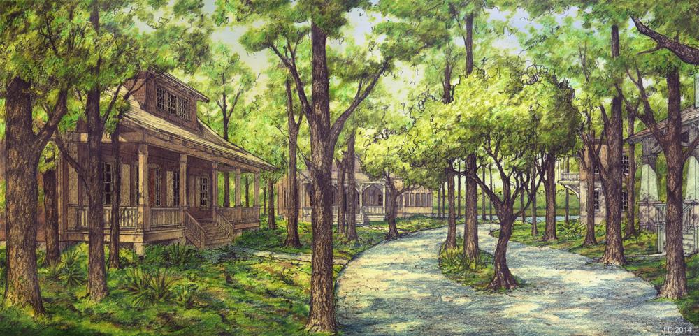street view under trees.jpg