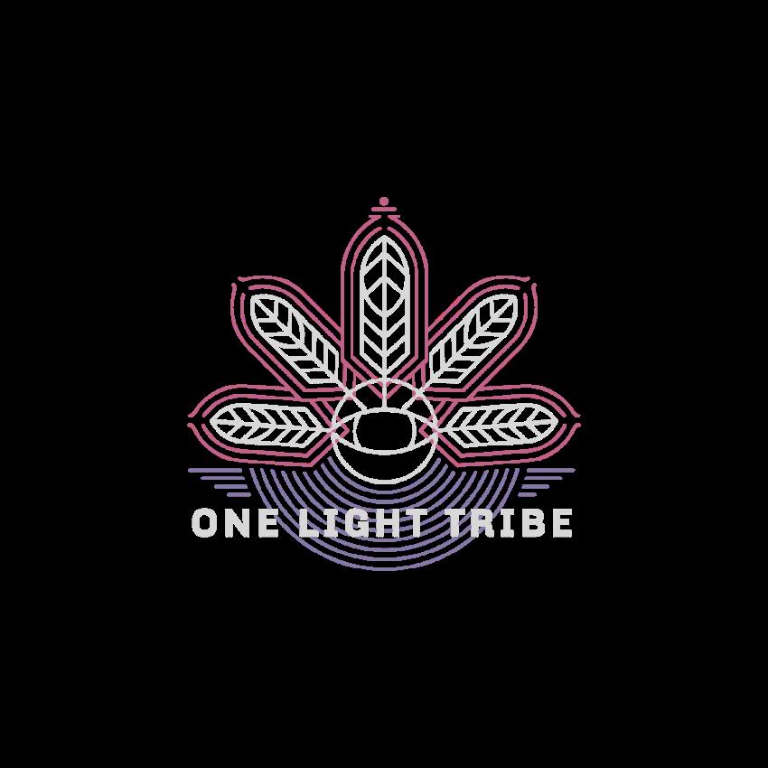 Ceremonial Cacao Recipe — One Light Tribe