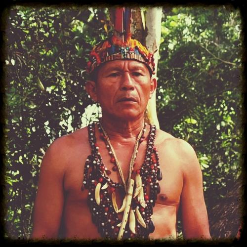 don-luis-vargas-napusamai-ayahuasca.jpg