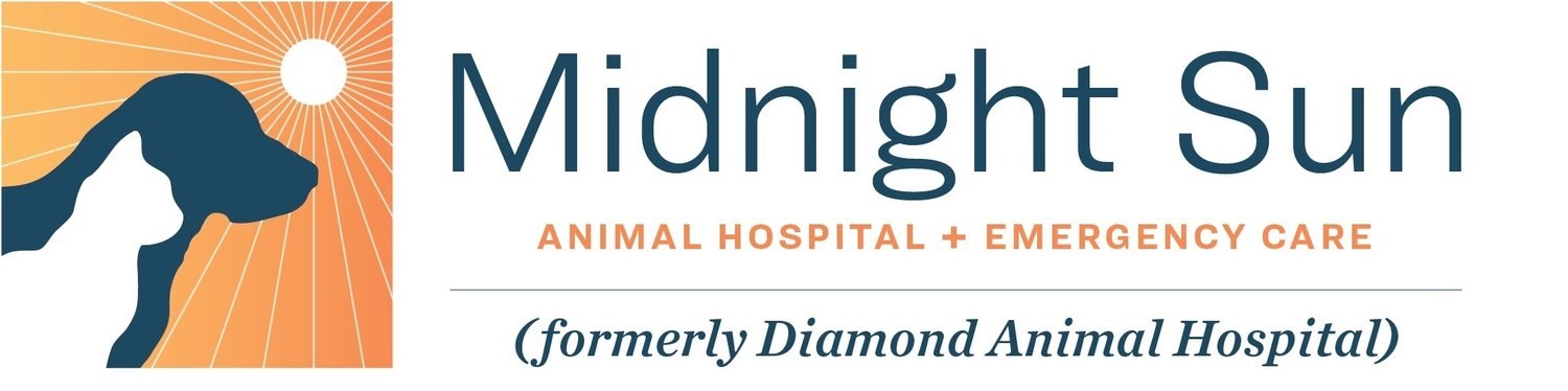 Midnight Sun Animal Hospital
