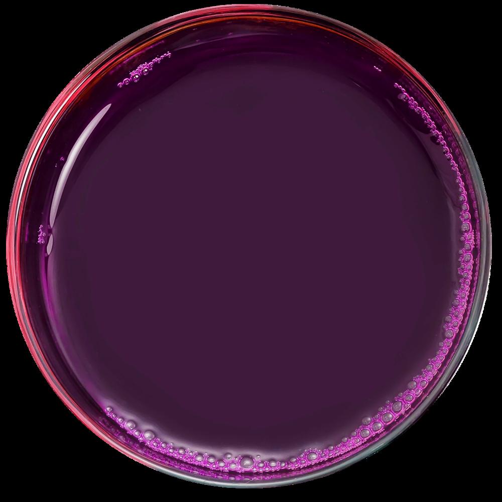 PurpleJuice (1).png