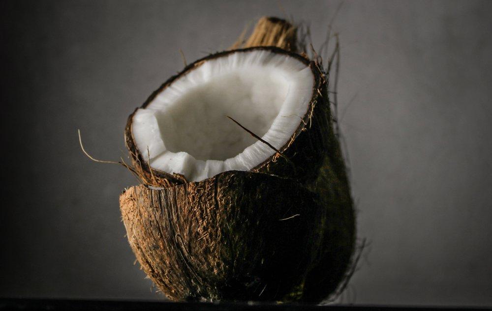 blur-close-up-coconut-1652002.jpg