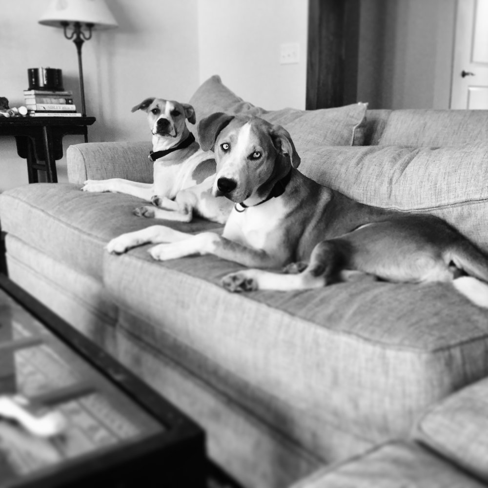 Sadie and Rufus