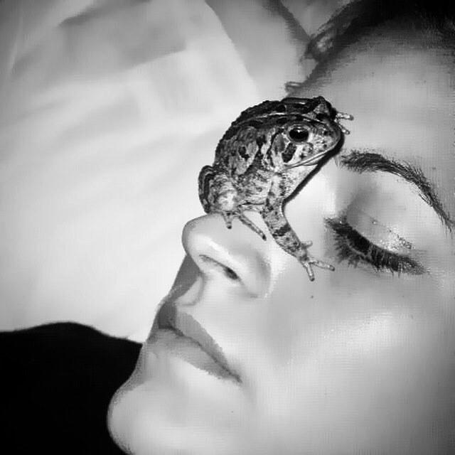 #what #myfriendsdressbetterthanyours #camochic? #toad #natureloverforlife