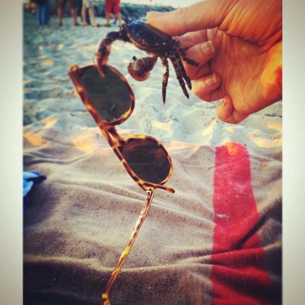 Dear #cancerian #crab: great taste but you are rude! #sunglasses #getyourclawoffmyglasses (at Barney's Joy Beach)