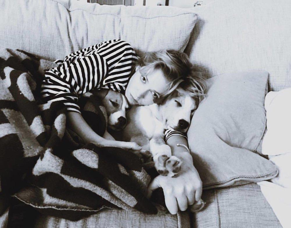 Synergy #rufus #sadie #mydogislongerthanme #andgrowing #puppiesfordays