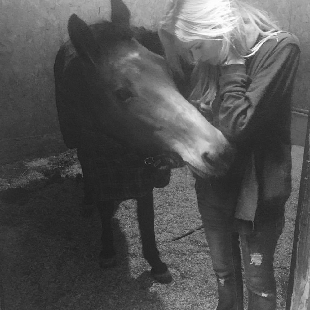 This beauty lives in my backyard. Or rather, I live in HER backyard. She is tall, gorgeous and eloquent yet bows down to smooch and sniff and is effortlessly elegant. How I love horses; and those that have brought me close to them. #HERSTORY #horsetory #morning glory