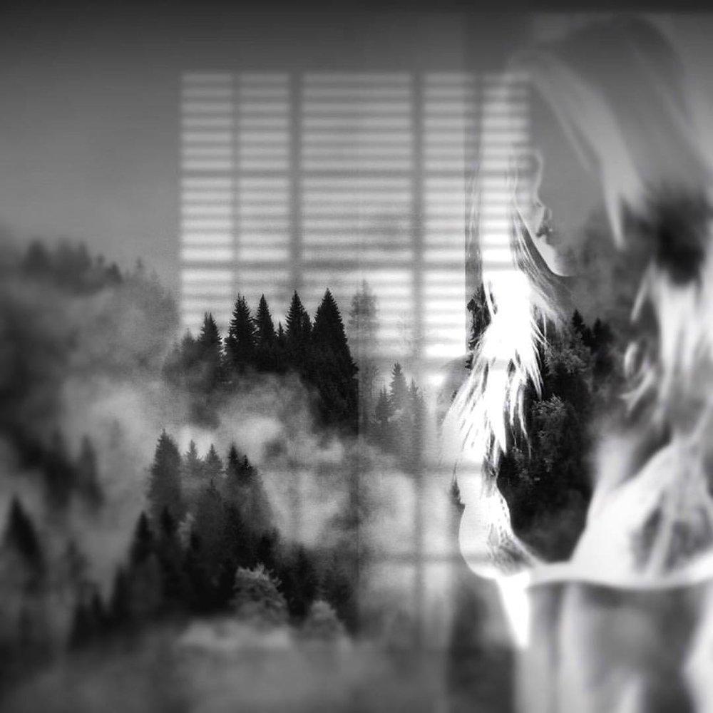 Out the window #newengland #fall #blackandwhite #tripleexposure #doubleexposure #paintedbylight #noirvue