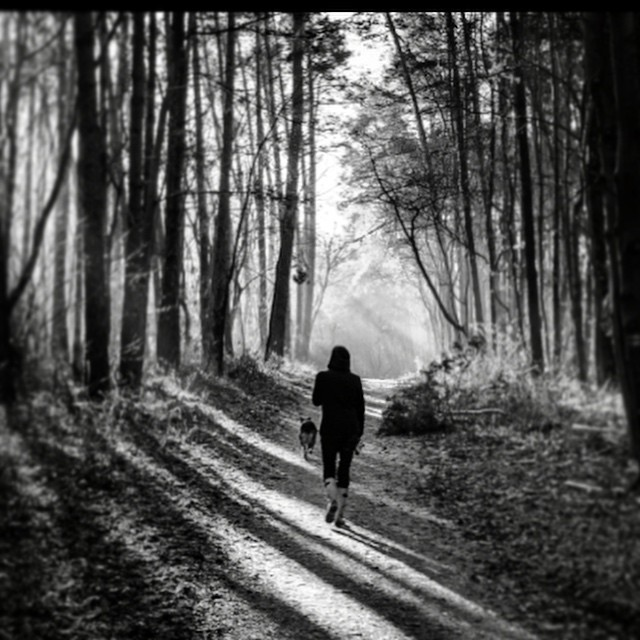 Beautiful light on my chilly run this morning #paintedbylight #blackandwhite  http://ift.tt/1y9gvgW