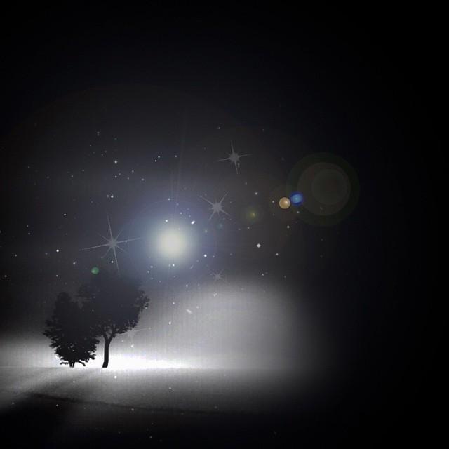 Night feeding #paintedbylight #blackandwhite  http://ift.tt/1qauX4A