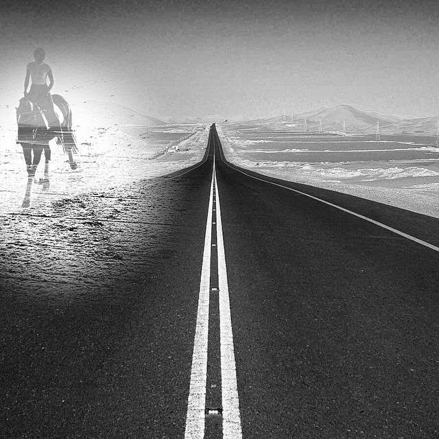 Road rules. #paintedbylight #blackandwhite #equestrian #blmmustang  http://ift.tt/1wXPo5U