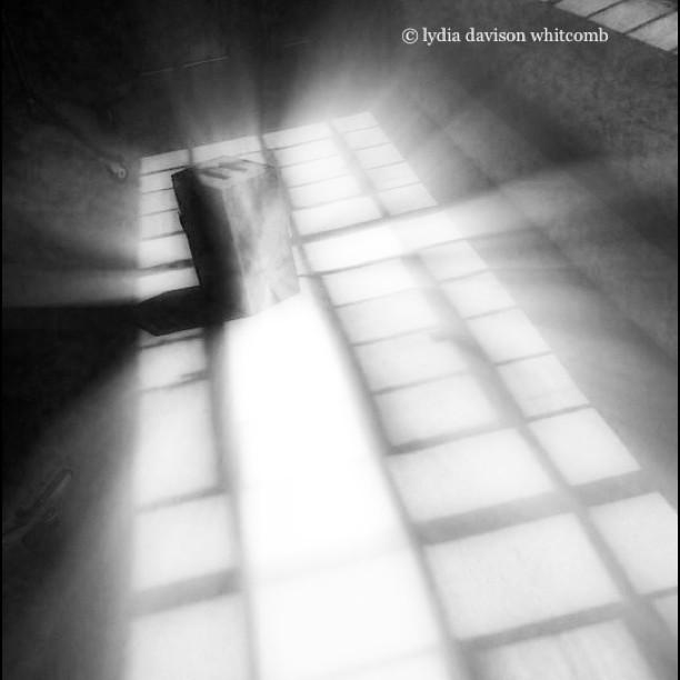 #noirvue #noir #monochrome #paintedbylight #blackandwhite #nyc