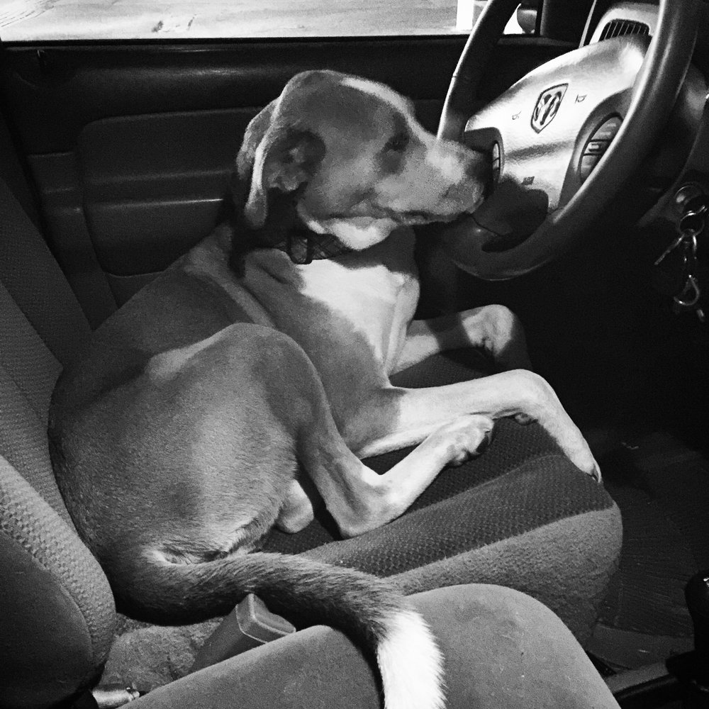 Rufus Drives