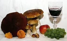 wine and mushroom.jpg