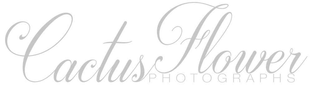 Cactus Flower Photographs Wedding Photographers