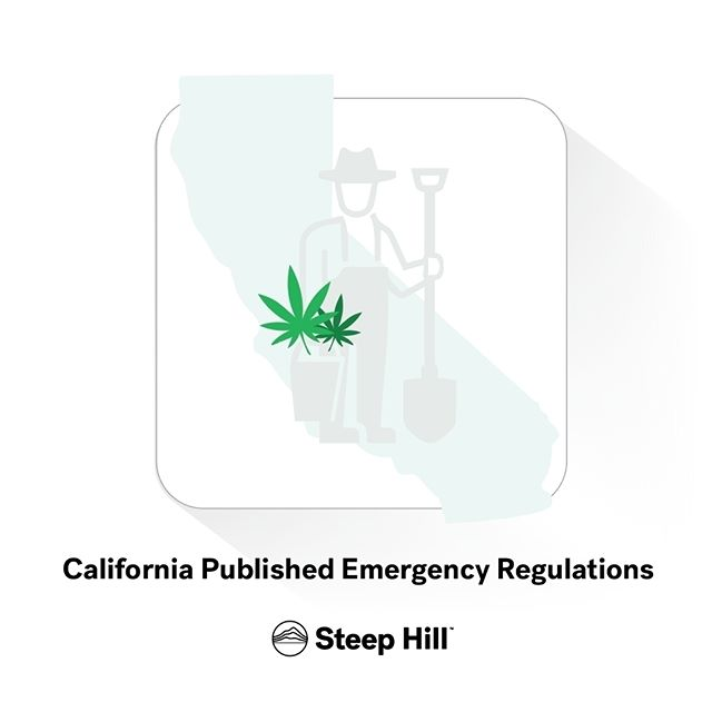 """#California is racing toward the launch of a state-regulated cannabis market, with sales set to begin Jan. 1 despite a number of unanswered questions.  On Thursday, with less than a month and a half before the program is slated to be up and running, state regulators unveiled a long-awaited package of emergency rules that will guide the industry through the transition ahead. We're poring over those documents and will update this page with key takeaways from the newly released guidelines."" via @Leafly  #mmj #cannabis #marijuana #weed #regulation #BMCR #california #medicalcannabis #recreational #stoners #weedfeed #cannabiz #mjbizcon #health #business #investment"