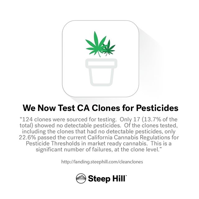 Regulation is around the corner: are you sourcing clean clones? We can validate that at our Berkeley Lab.  #mmj #weed #marijuana #grower #cultivator #science #pesticides #chemistry #regulation #BCC #medicalcannabis #medicalmarijuana #stoners #farmers #humboldt #mendocino #losangeles #socal #norcal #california #steephilllab