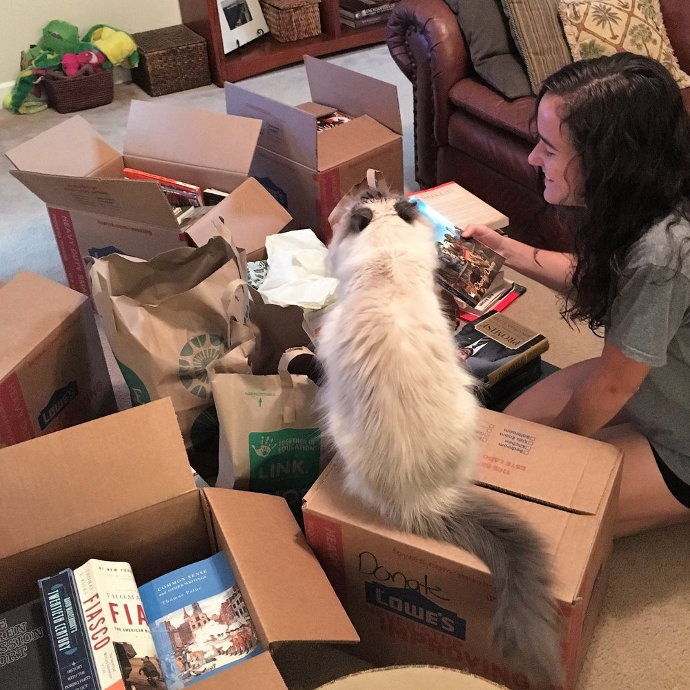 All hands (or paws) on deck! Here's a Regional Director getting some help organizing donated books.