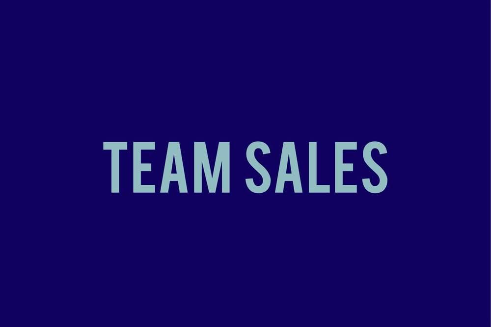 team sales.JPG