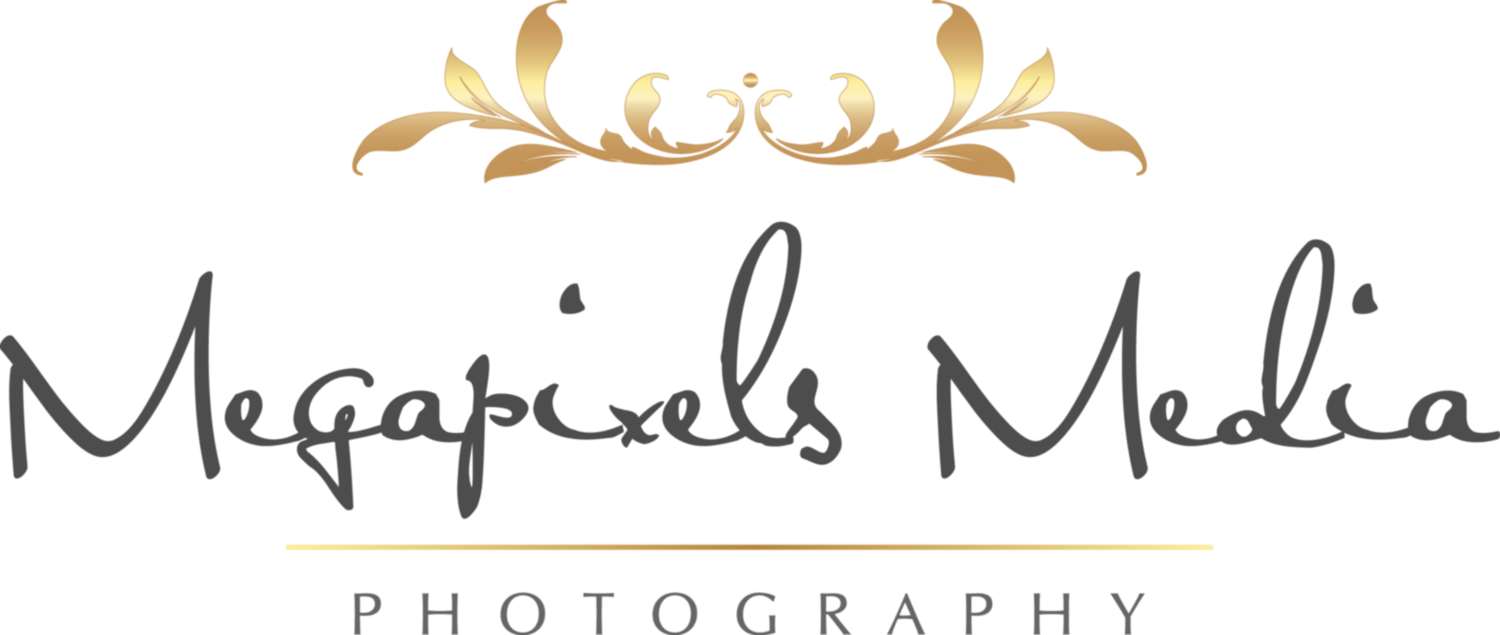 Megapixels Media | Wedding Photographers